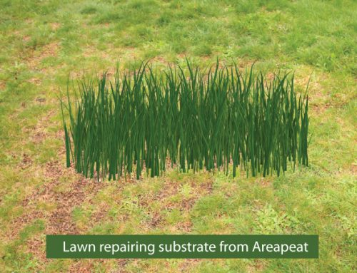 Lawn repairing with black peat moss substrate