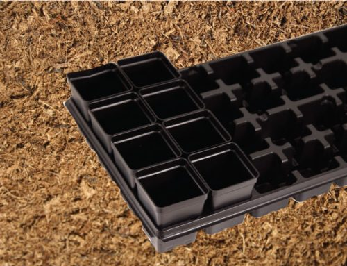 Number of peat moss filled pots