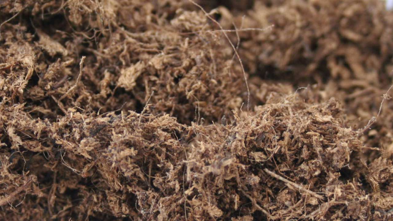 Airy, light, ideal type of peat for root development, does not allow the soil to flatten. Obtained and developed by Areapeat