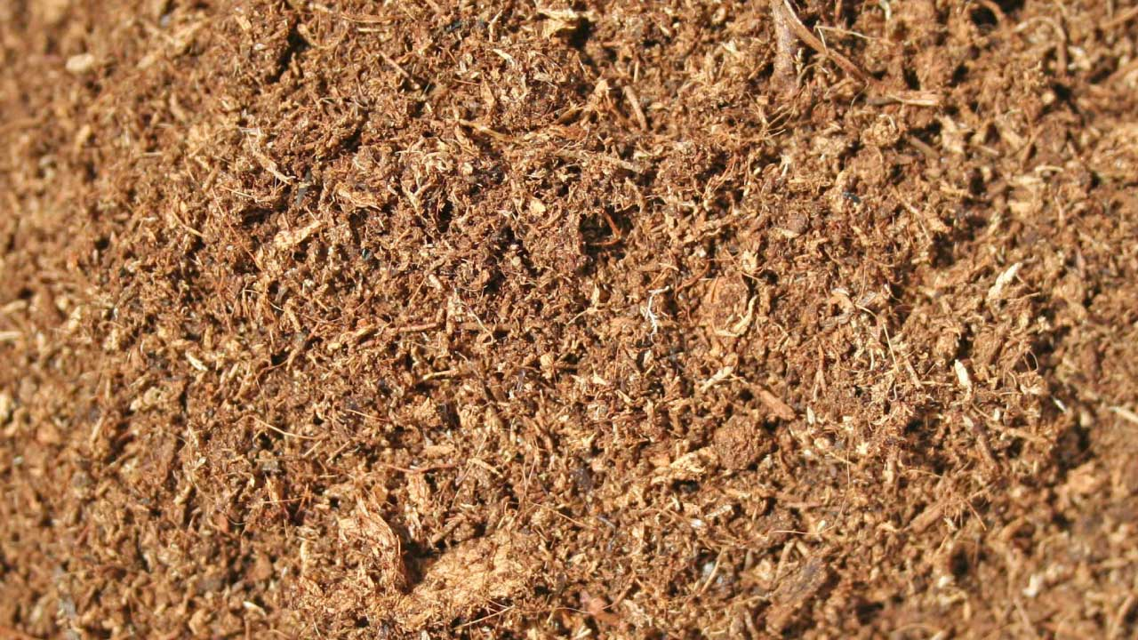 Basic raw material for all soilless peat moss substrates. Areapeat