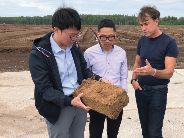 Our partners from China reveal secrets of peat quality issue