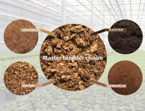 How find simply the best peat mixture?
